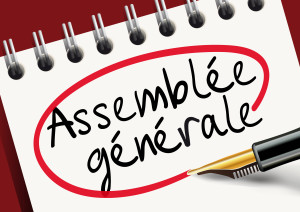Assemble gnrale - organisation